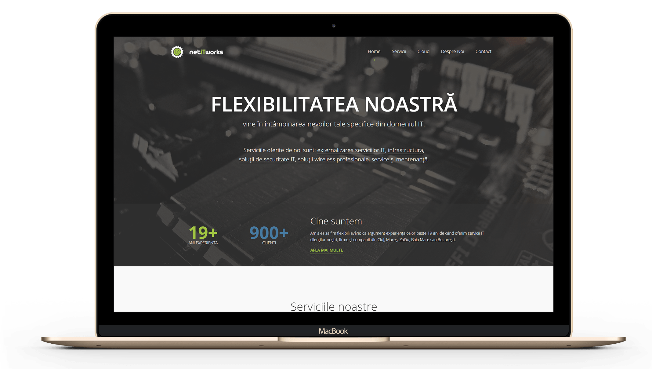netitworks-design-main